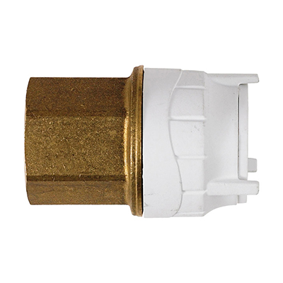 PolyFit 22mm x 3/4inch Female BSPT Adaptor Brass Body