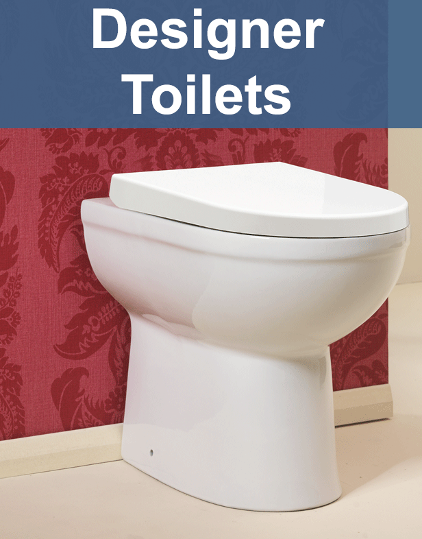 Modern and Traditional Toilets